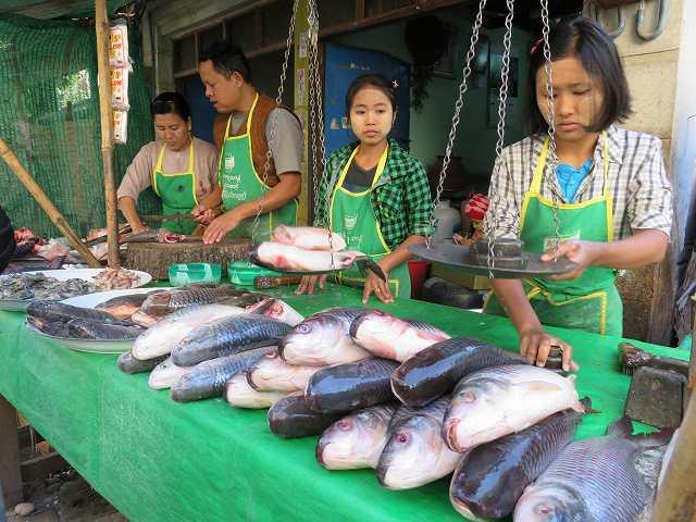 ミャンマーの市場で魚を売っているようす