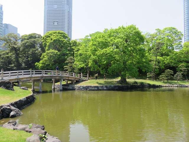 浜離宮恩賜庭園内にある池と橋