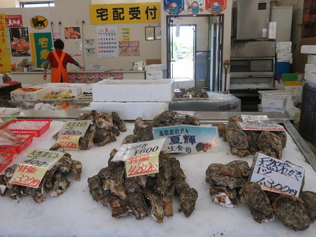 鳥取の道の駅はわいで売られている天然岩ガキ「夏輝」