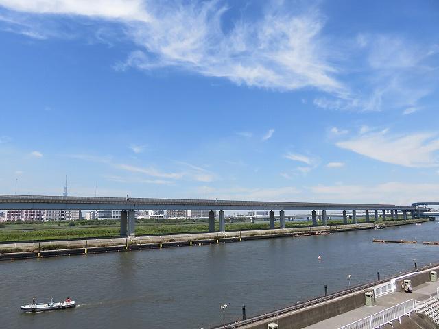 江戸川競艇場の水面