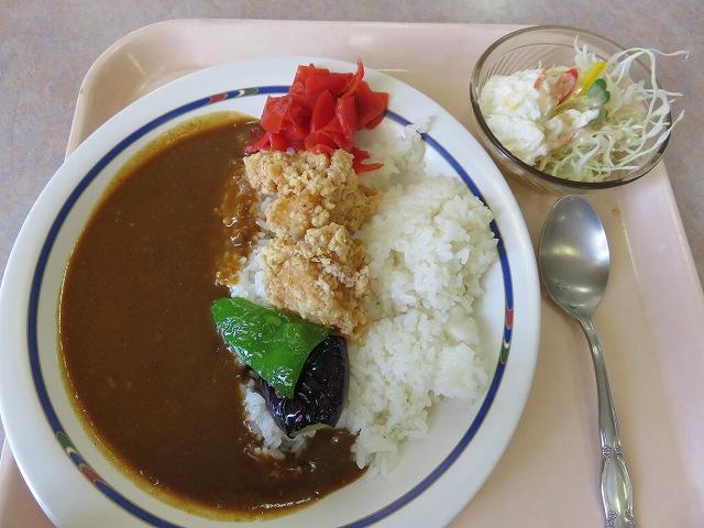 浜名湖競艇場2階レストラン「ピット・イン」の本日のおすすめカレー