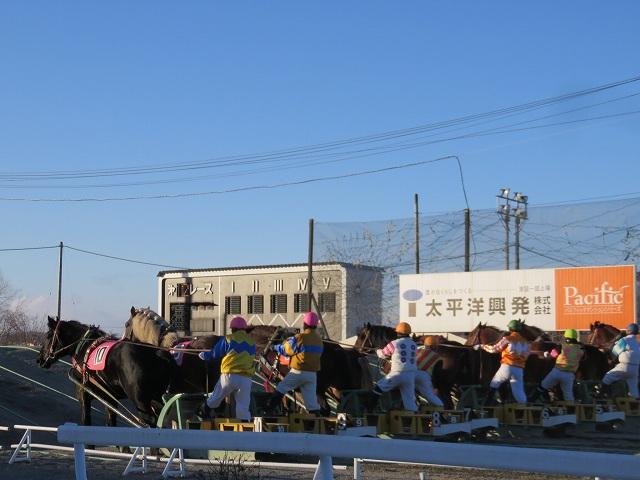 帯広競馬場の第二障害をあがる馬たち