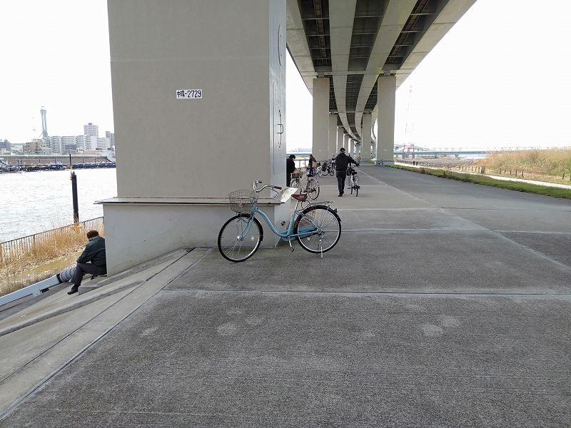 江戸川競艇場の対岸、首都高速の下の道路