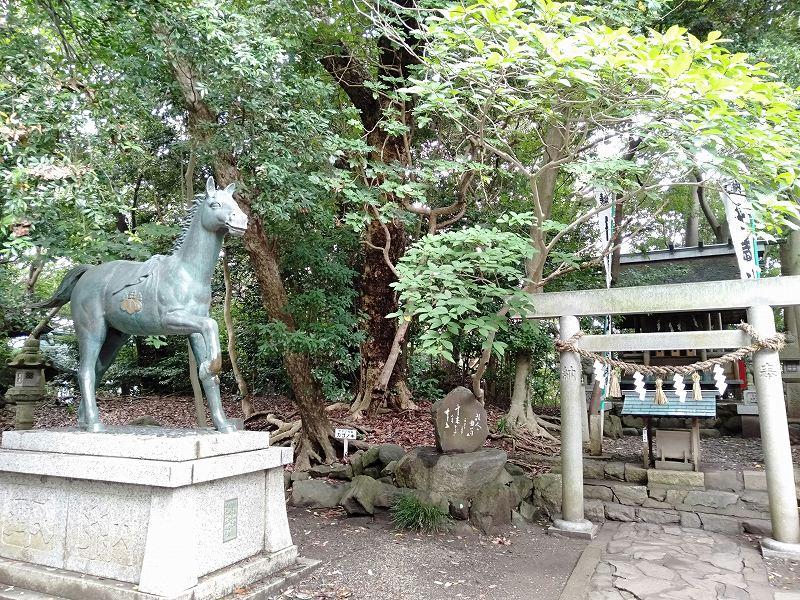 蒲郡の竹島にある八百富神社境内