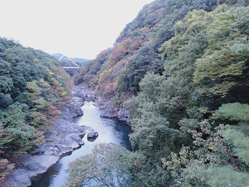 高津戸峡の高津戸橋から見える景色