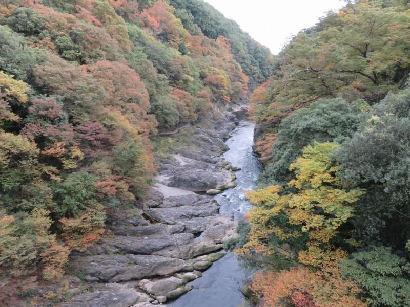 高津戸峡のはねたき橋の上からの景色