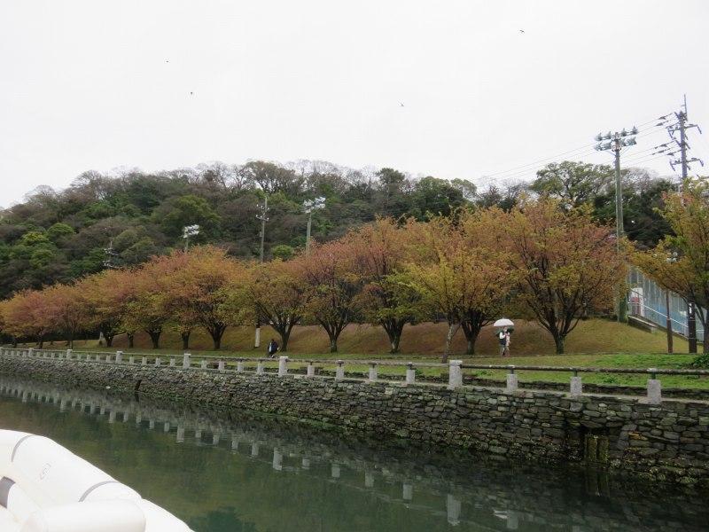 徳島市のひょうたん島クルーズの船内から見える景色